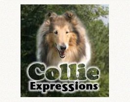 Logo linking to Collie Expressions magazine.