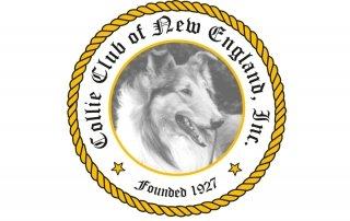 CCNE Logo for Blog